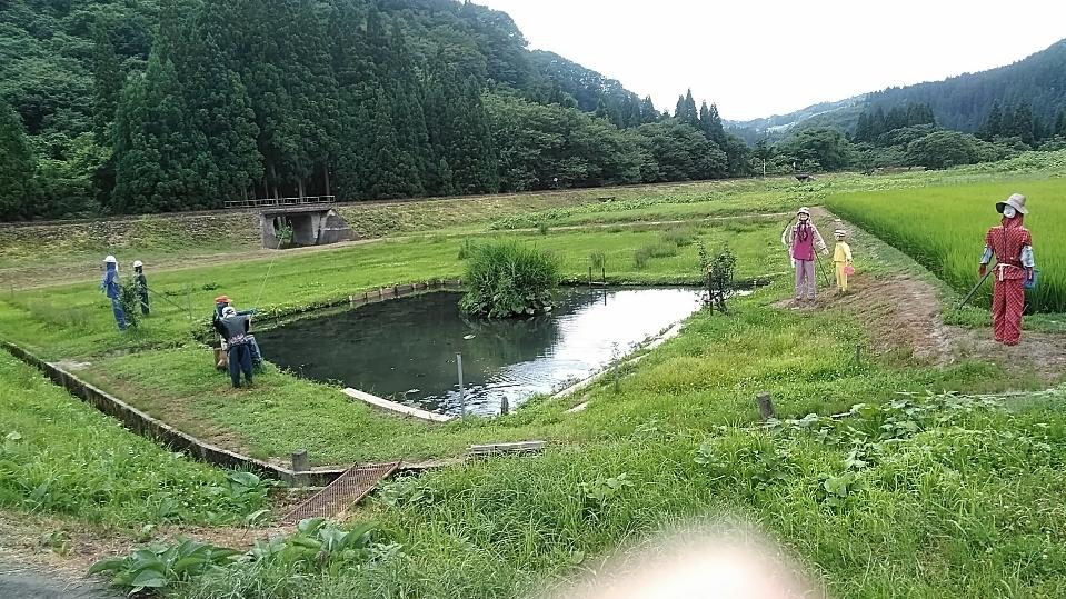 f:id:mamemuchi:20180831110419j:plain