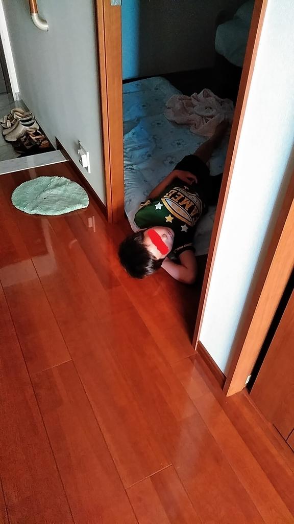 f:id:mamemuchi:20181118154056j:plain