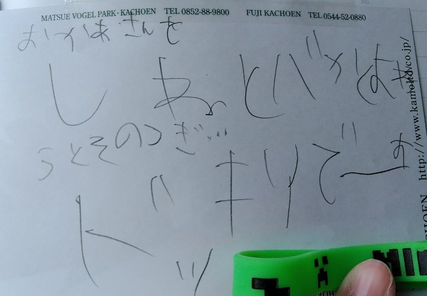 f:id:mamemuchi:20190615160307j:plain