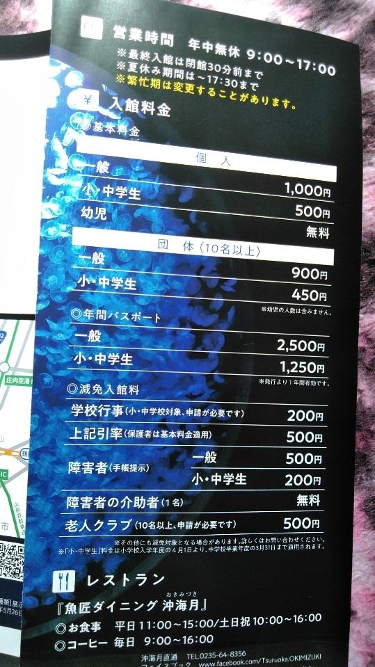 f:id:mamemuchi:20190908142721j:plain