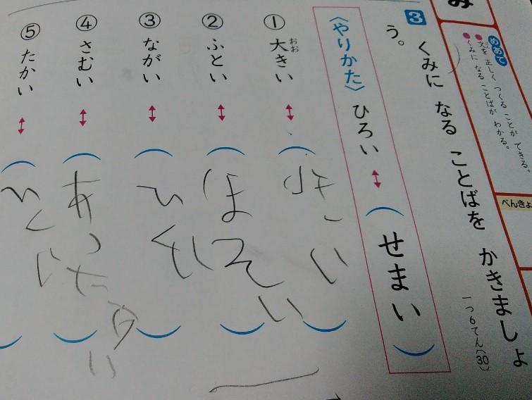 f:id:mamemuchi:20191207143721j:plain