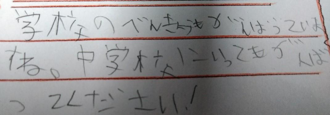 f:id:mamemuchi:20200315133757j:plain
