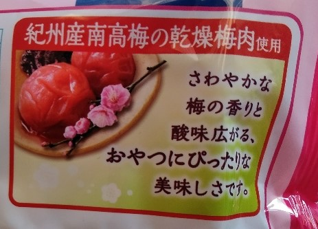 f:id:mamemuchi:20200821214924j:plain