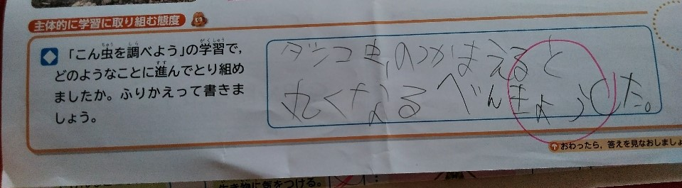 f:id:mamemuchi:20201004151928j:plain
