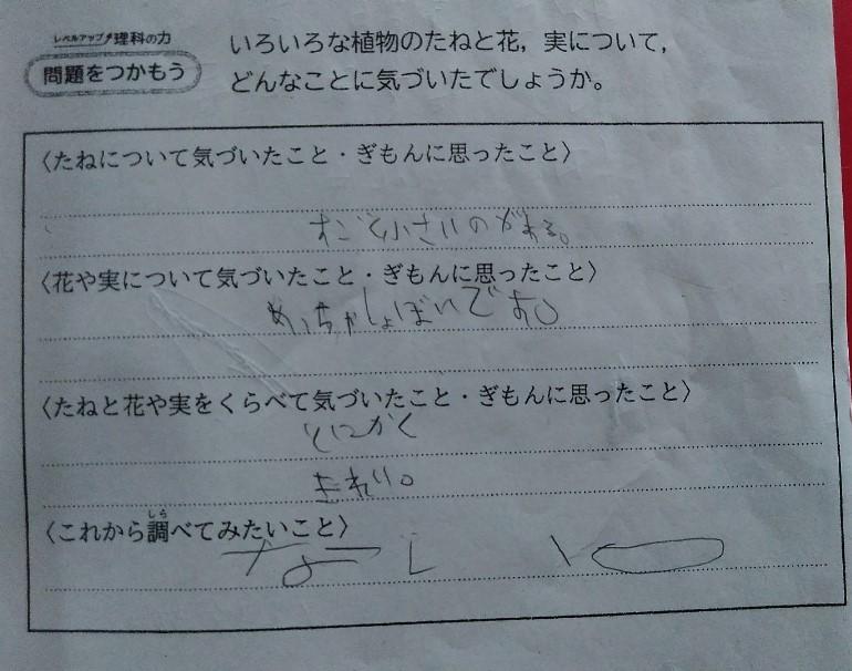 f:id:mamemuchi:20201004152008j:plain