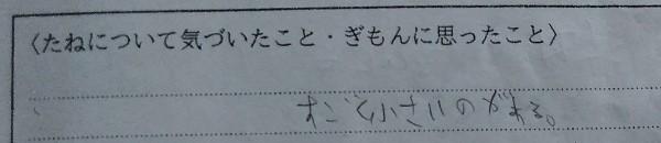 f:id:mamemuchi:20201004152021j:plain