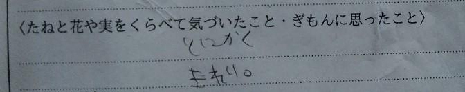 f:id:mamemuchi:20201004152054j:plain