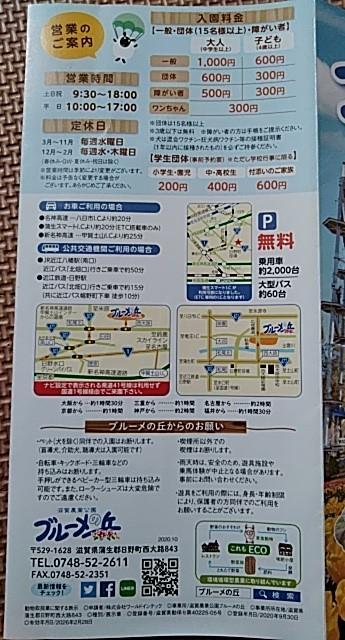 f:id:mamemuchi:20201103112851j:plain