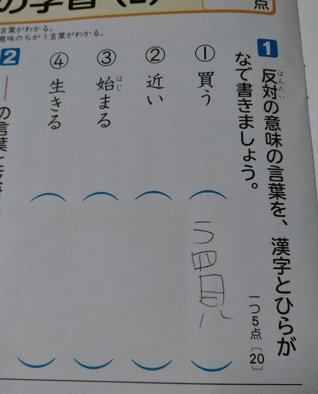 f:id:mamemuchi:20210214103934j:plain