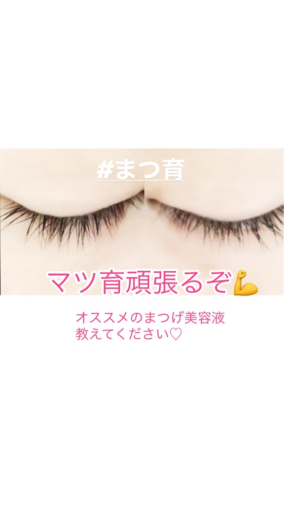 f:id:mamenokonoha:20200128094656j:image