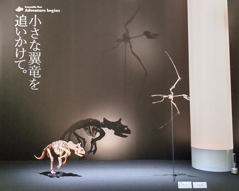 翼竜を追いかけるトリケラトプスの幼体