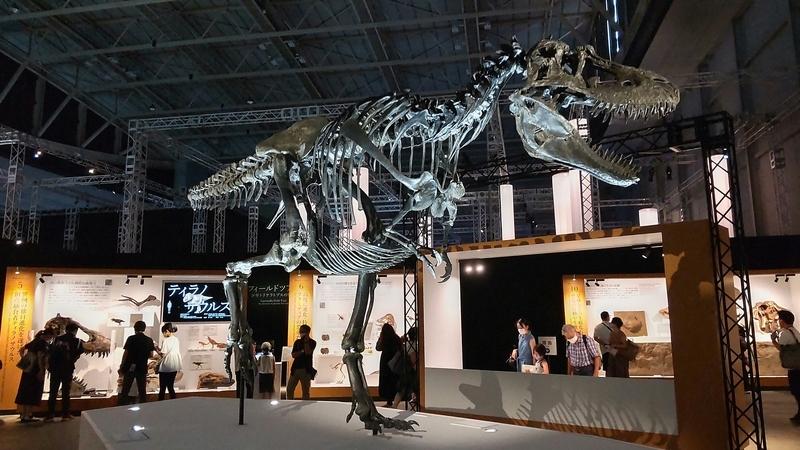 満身創痍のゴルゴサウルス