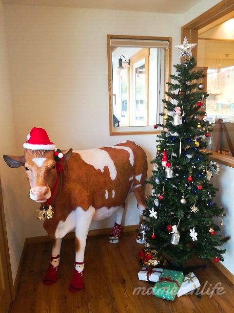 加勢牧場入口のクリスマスツリー