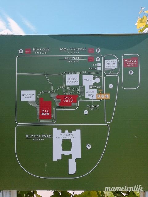 ごとらってのあるカーブドッチの地図