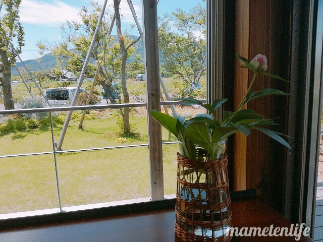 タイボウコーヒージェラートソフトに生けてある花
