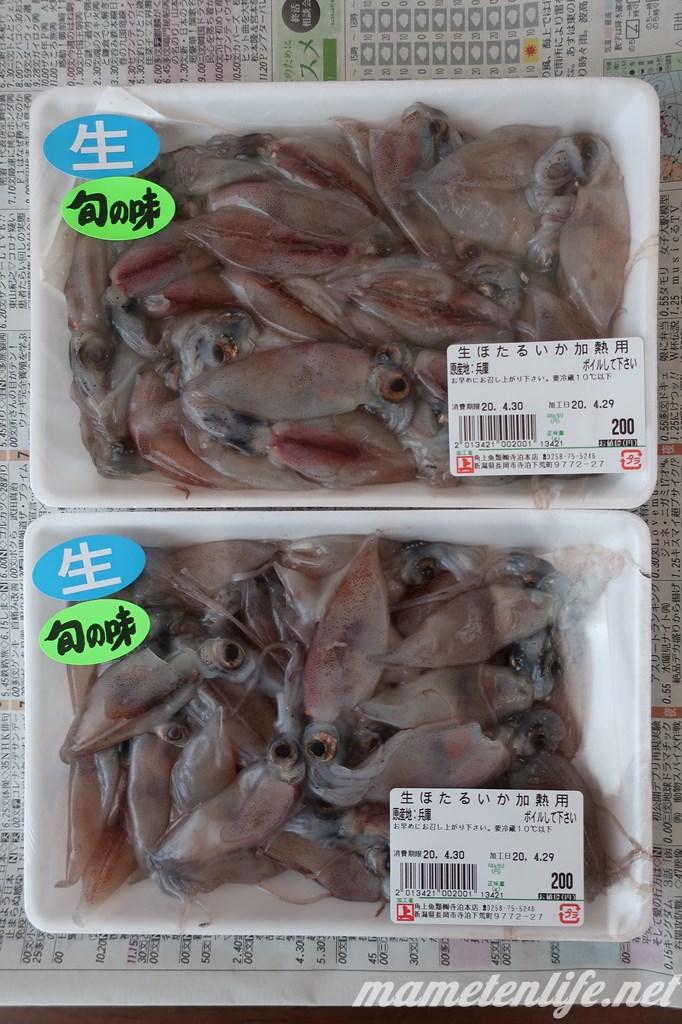 角上魚類で購入した生ほたるいか