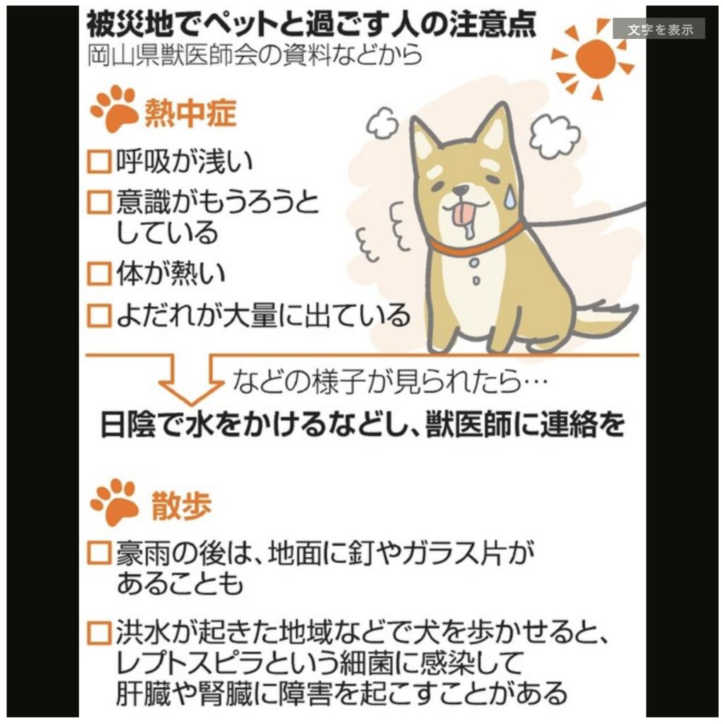 f:id:mami_tasu:20180719204540p:plain