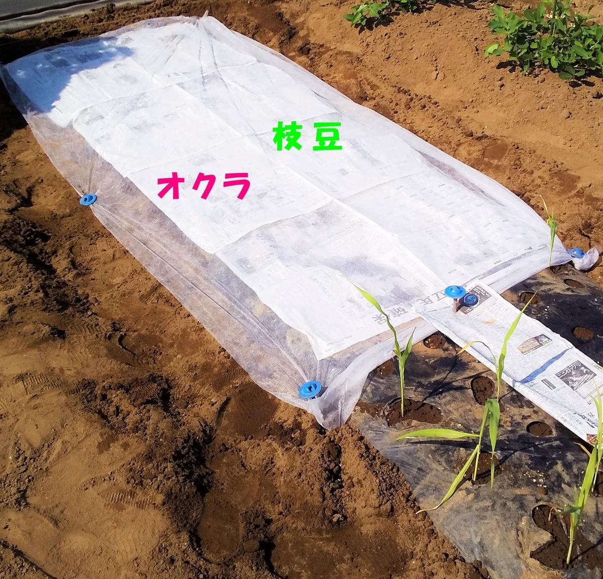 f:id:mamichan-yasai:20190811191812j:plain
