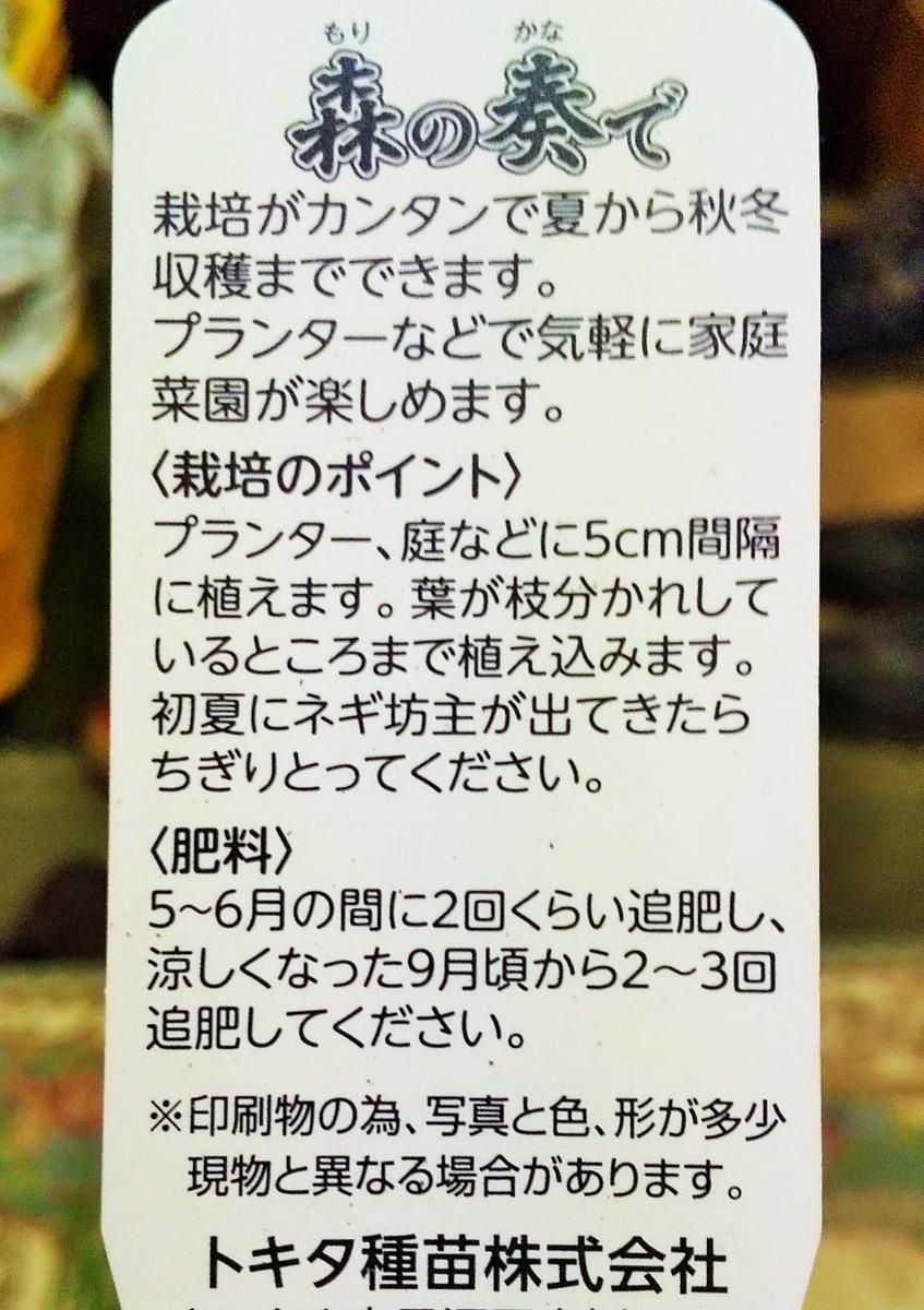 f:id:mamichan-yasai:20200316213825j:plain