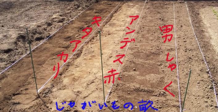 f:id:mamichan-yasai:20200323222635j:plain