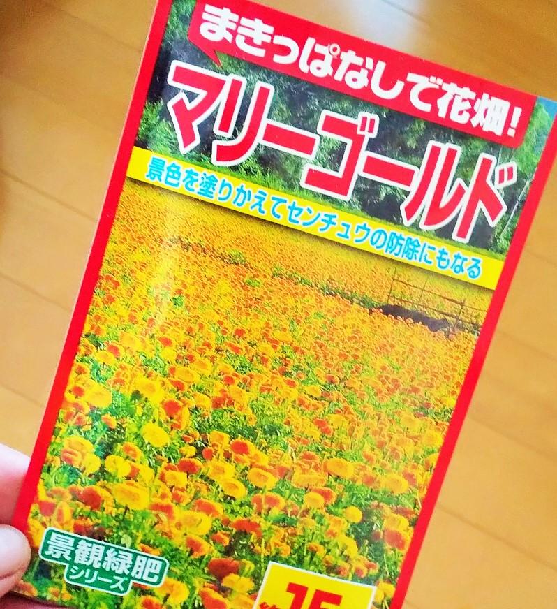 f:id:mamichan-yasai:20200411063512j:plain