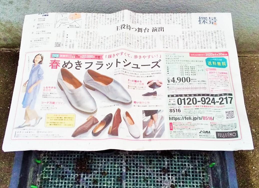 f:id:mamichan-yasai:20200505074059j:plain