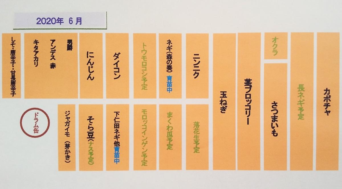 f:id:mamichan-yasai:20200607110436j:plain
