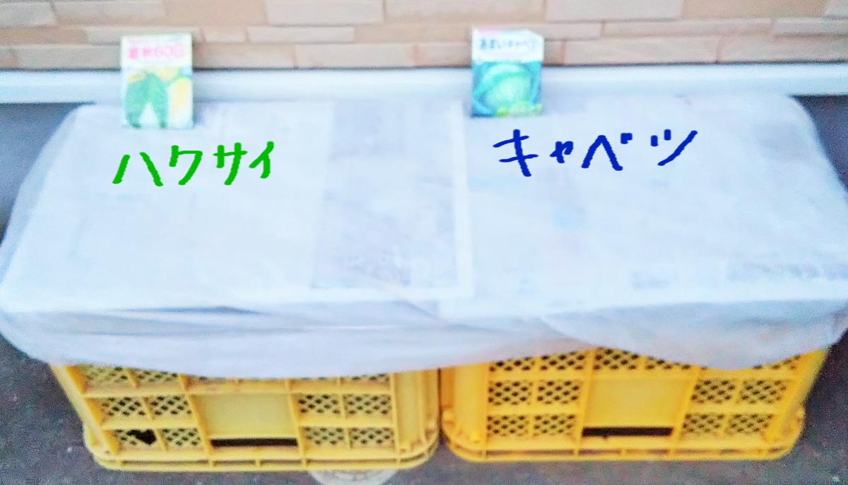 f:id:mamichan-yasai:20200818153917j:plain