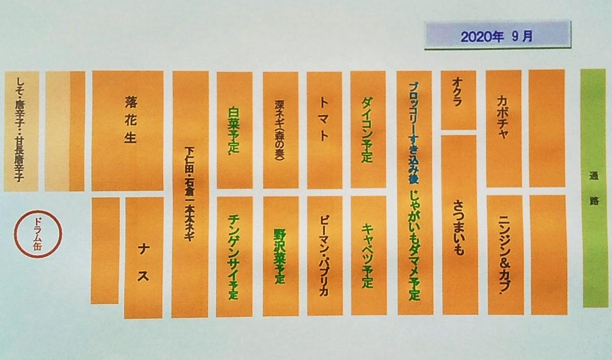 f:id:mamichan-yasai:20200902175433j:plain