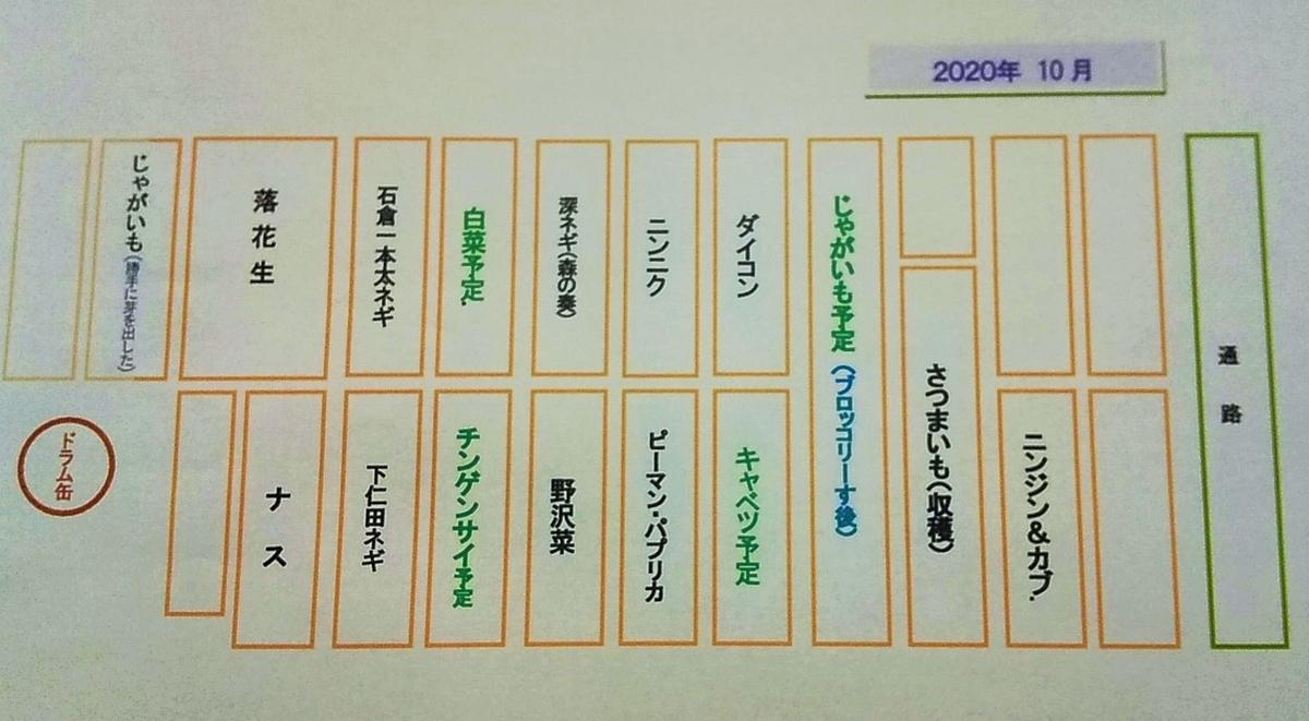 f:id:mamichan-yasai:20201027203931j:plain