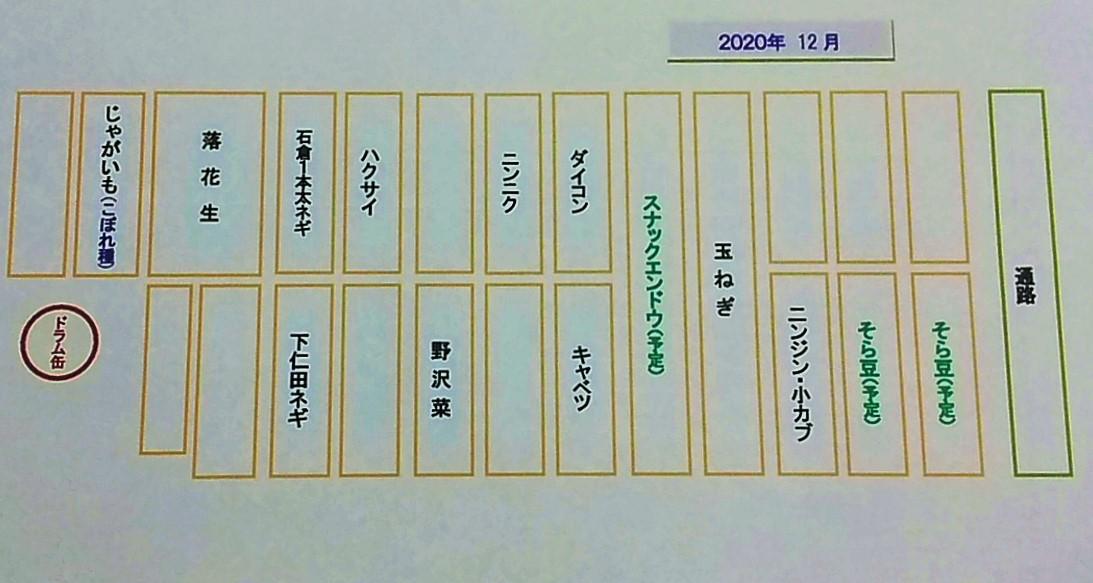 f:id:mamichan-yasai:20201202232816j:plain