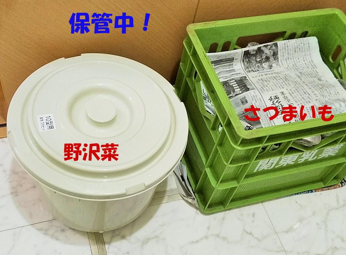 f:id:mamichan-yasai:20201209004719j:plain