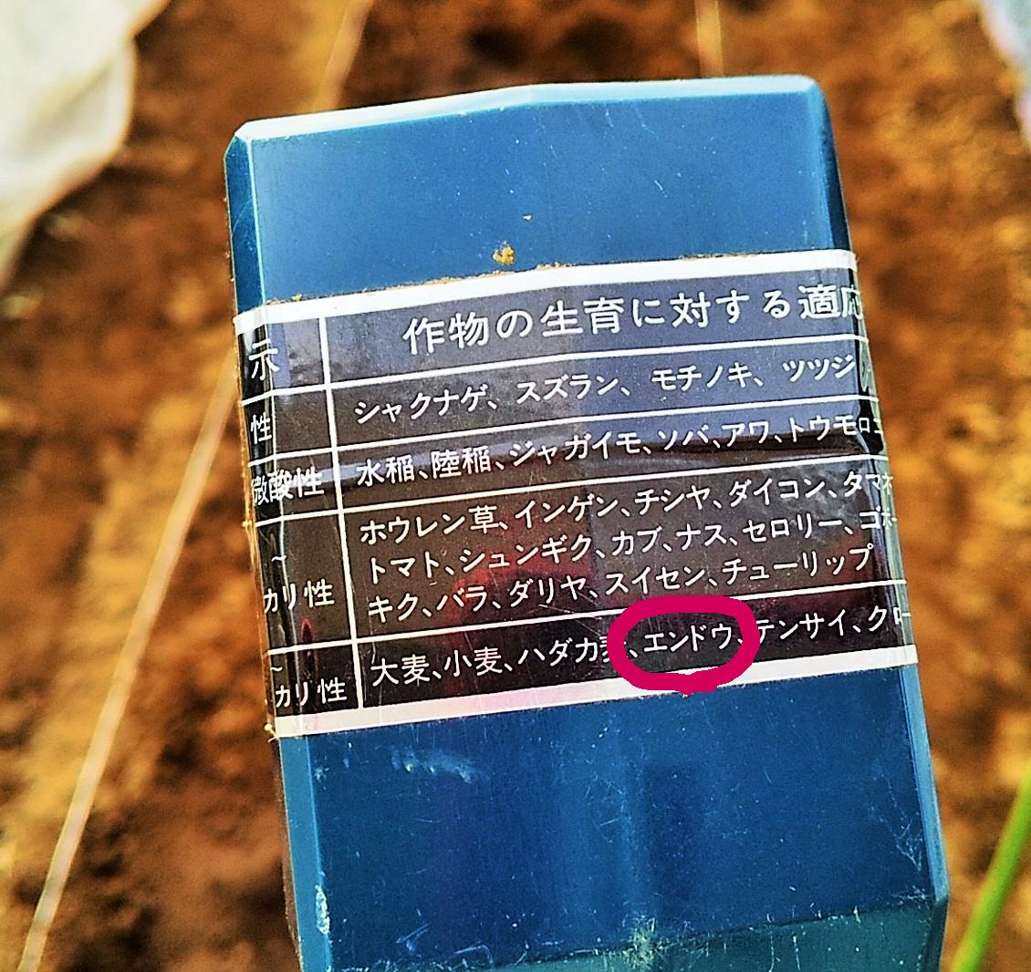 f:id:mamichan-yasai:20210112001443j:plain