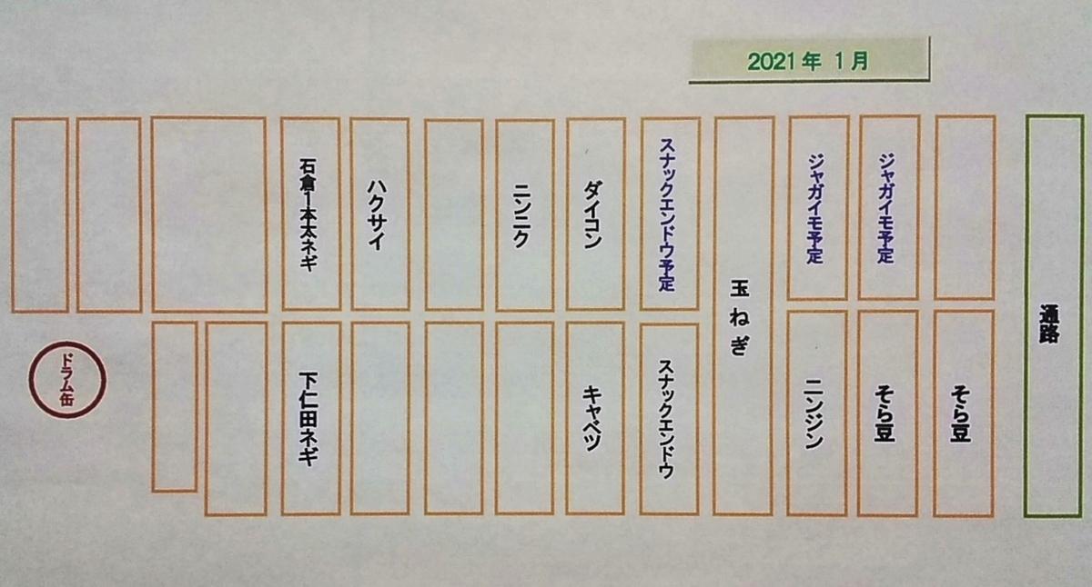 f:id:mamichan-yasai:20210113180710j:plain