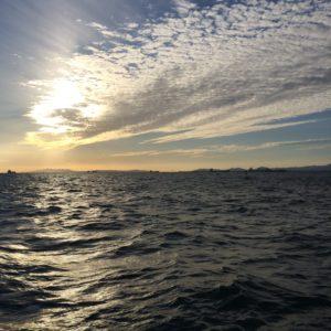 夕焼け 南港魚つり園護岸