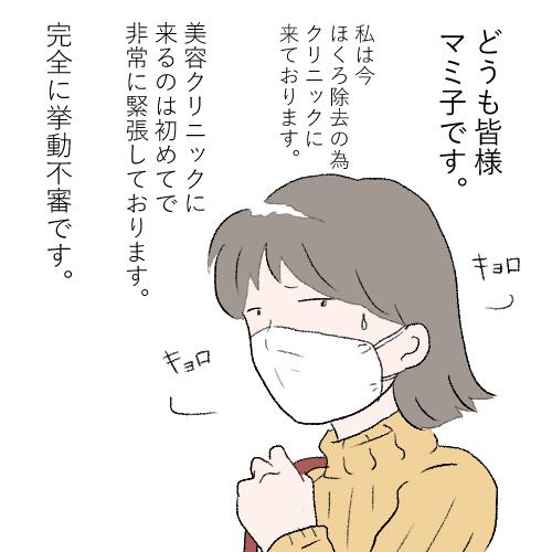 f:id:mamiko7:20201124123809j:plain