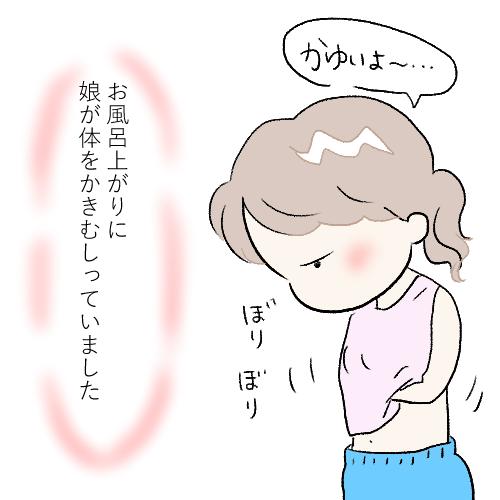 f:id:mamiko7:20201126114606j:plain