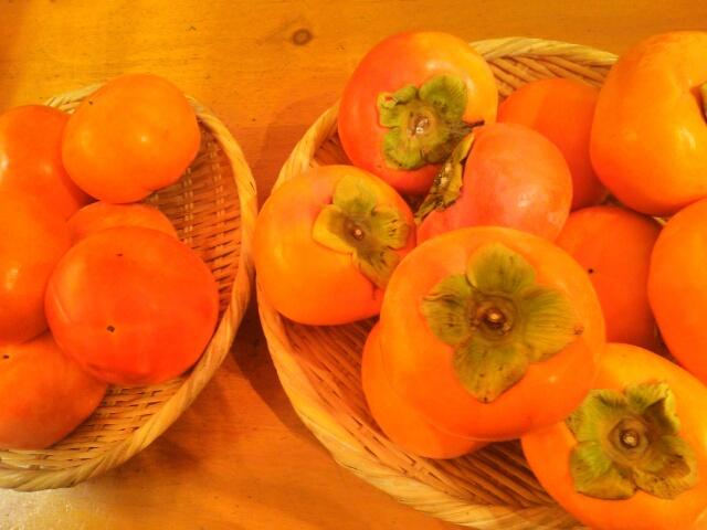 大量の柿画像