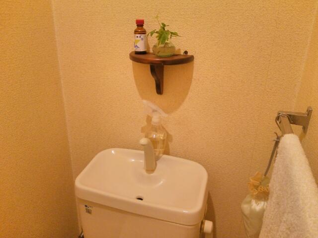 便器の蓋を閉めたトイレ画像