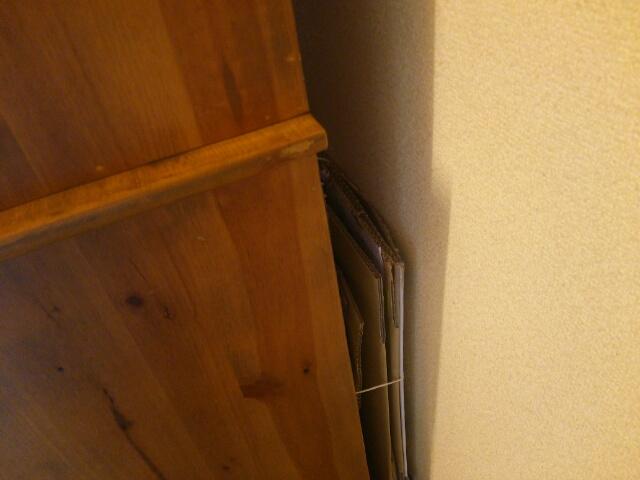 食器棚の後ろに隠した資源ゴミの段ボール画像