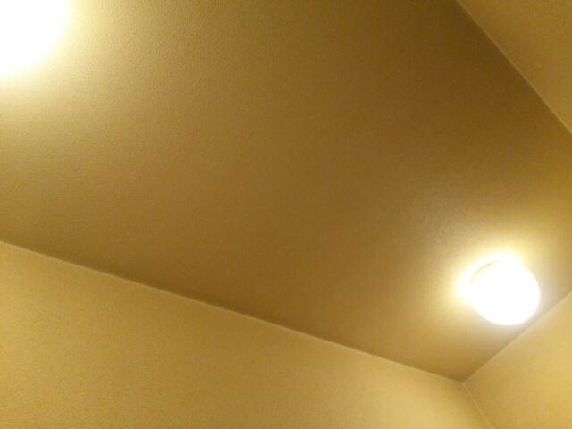 点けっぱなしにしている玄関の電気画像