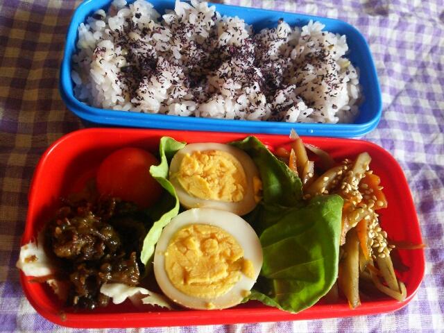 雑穀米と煮玉子弁当画像