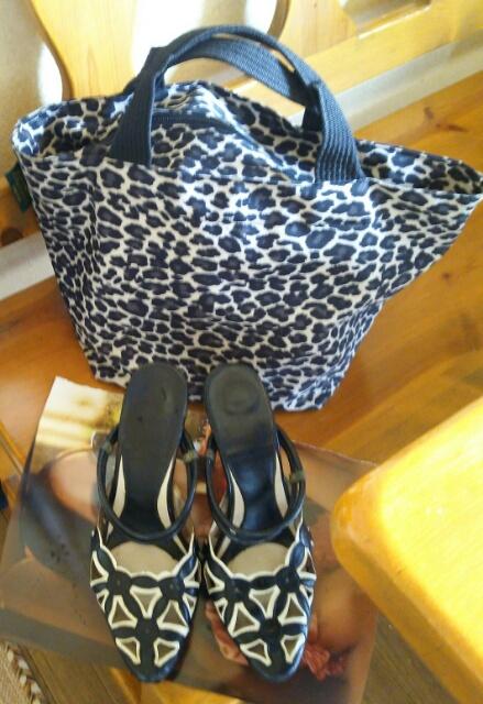 エルベ・シャプリエのバッグとパンプス