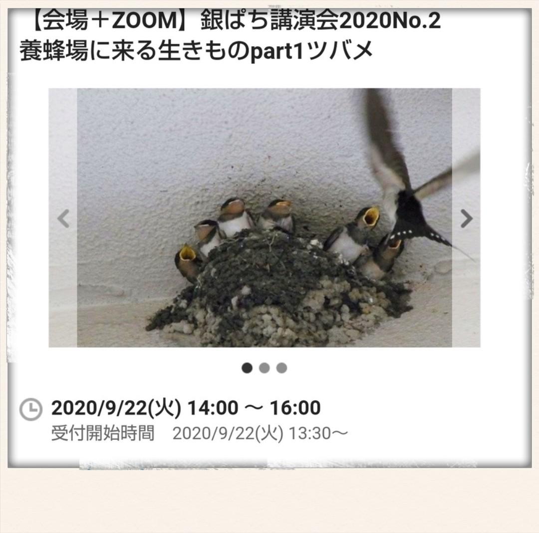 f:id:mamiyankun:20200926152502j:plain
