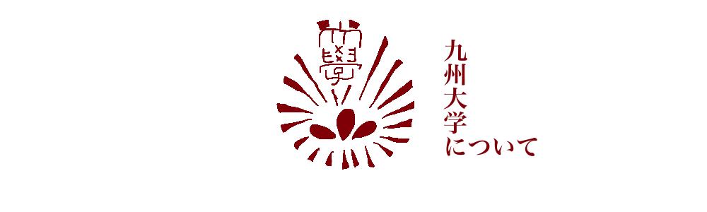 f:id:mamizuharuka:20200411095455p:plain