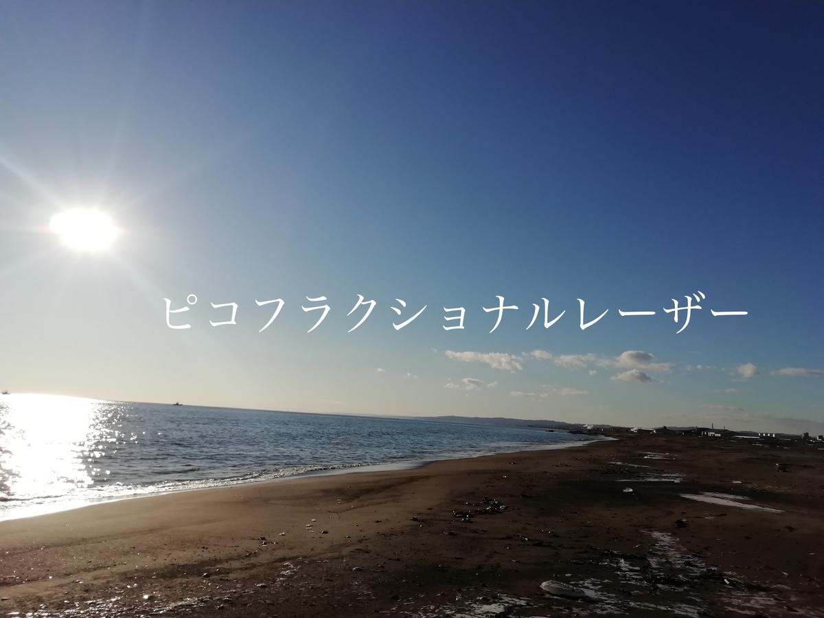 f:id:mamizuharuka:20210404154607j:plain