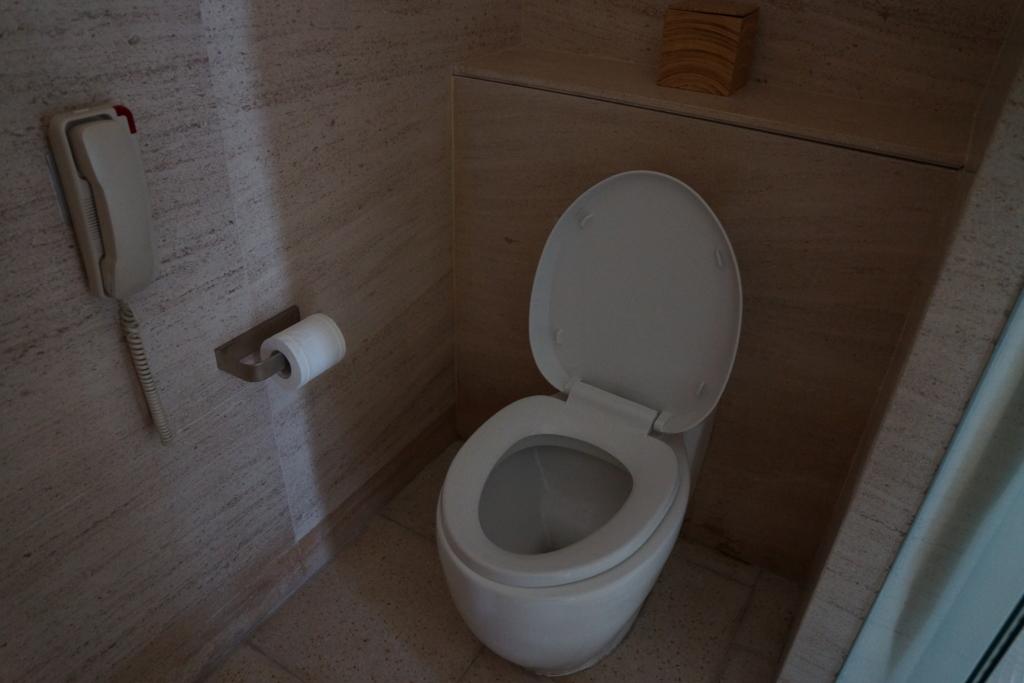 ダナン ハイアットリージェンシーのトイレ