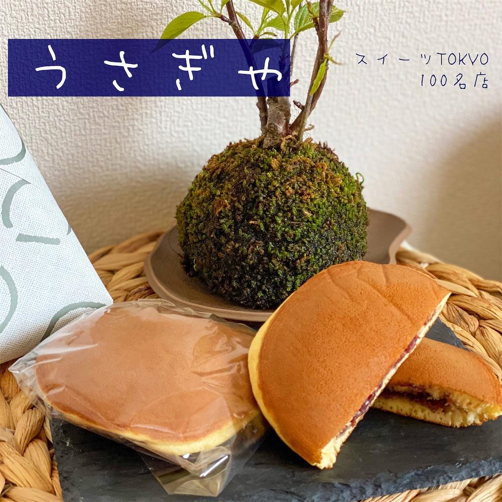 f:id:man_chan:20210329105651j:image