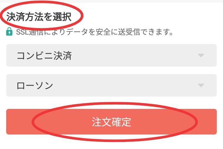 f:id:mana_log:20200401114141j:plain