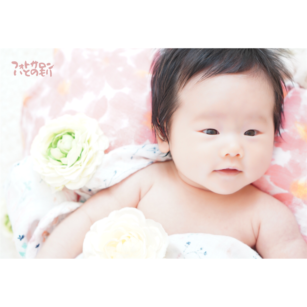 f:id:manababy:20200916170802p:image